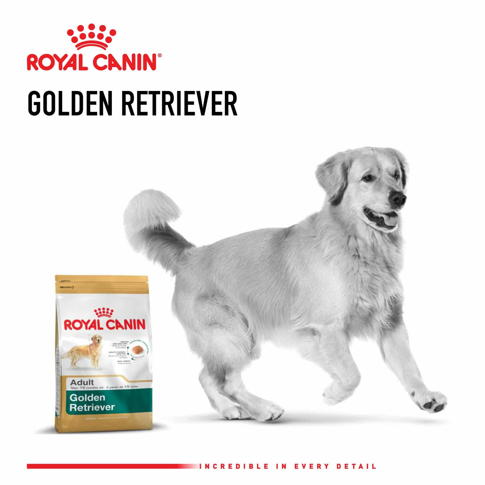 Royal Canin_Posts85